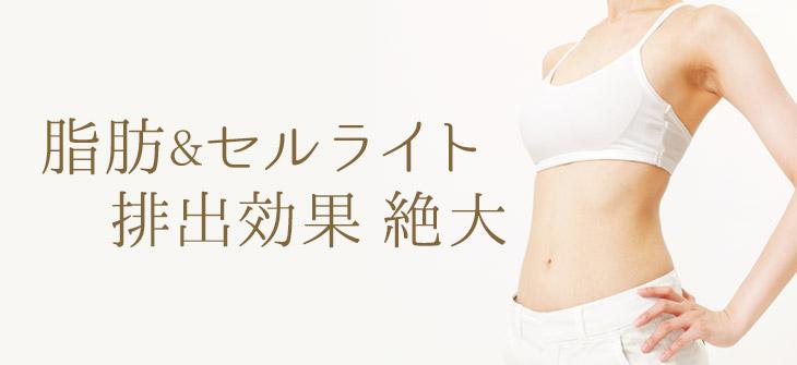 脂肪&セルライト排出効果絶大